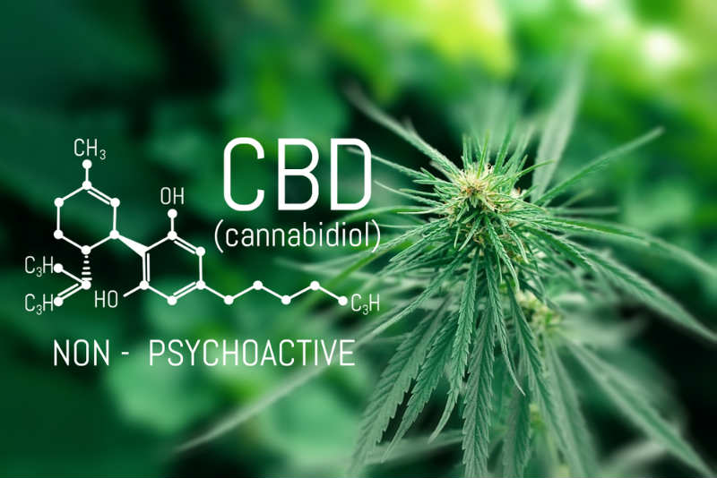 Can CBD help with anxiety