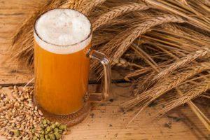 Beer Yeast & CBD