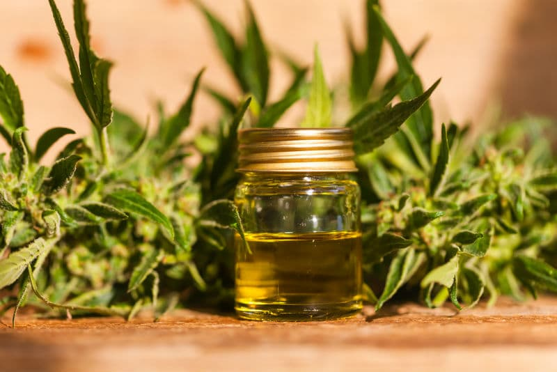 Where Can You Buy CBD Oil In The UK?