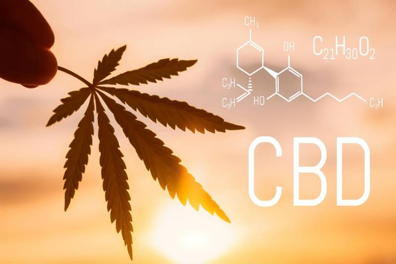 CBD Sales In The UK Increase 99%