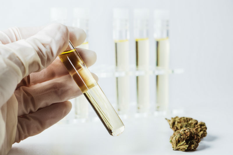 How To Assess CBD Strength & Potency - CBD Guide