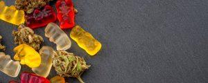 CBD and THC Gummies