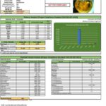 Potency analysis report