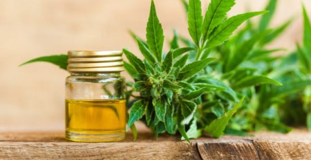 Best CBD Oil Brands