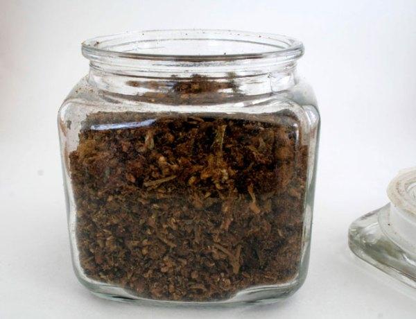 Cannabis-AVB