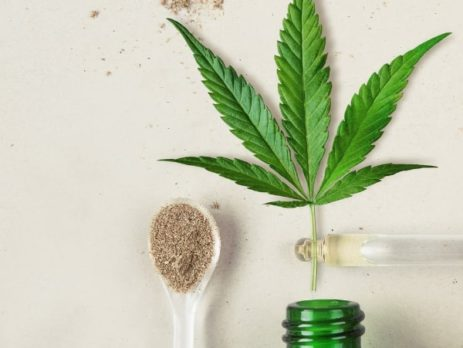 Weight Loss and CBD: Which Products Work Best?